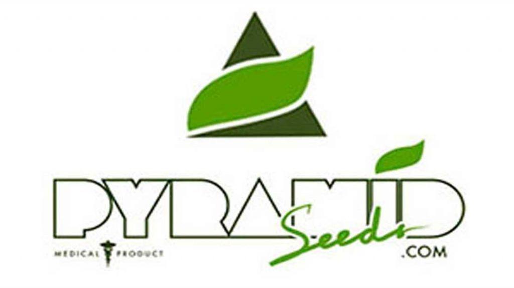 Pyramid Seeds es un banco de semillas español de primera división.