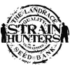 Strain Hunters feminized | Buy Marijuana Seeds
