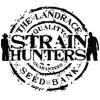 Strain Hunter autoflowering | Buy Marijuana Seeds