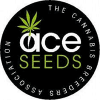 Ace Seeds | Feminized Marijuana Seeds
