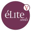 Buy cheap feminized Elite Seeds | Feminized seeds