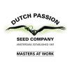 Dutch Passion autoflowering | Buy Marijuana Seeds