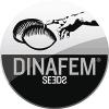 Dinafem autoflowering marijuana seeds