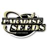 Paradise Seeds autoflowering | Buy marijuana seeds