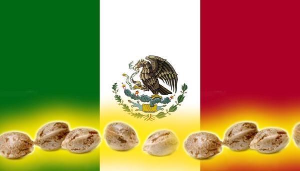 bandera México con semillas de marihuana