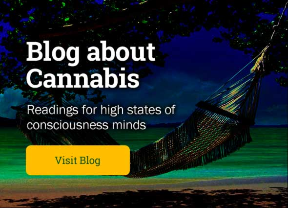 Cannabis Blog