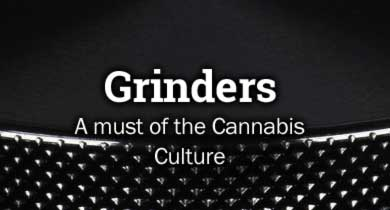 Grinders cannabis
