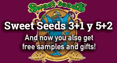 Seeds deal 1