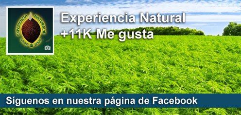 Experiencia Natural Cannabis Seeds in Facebook